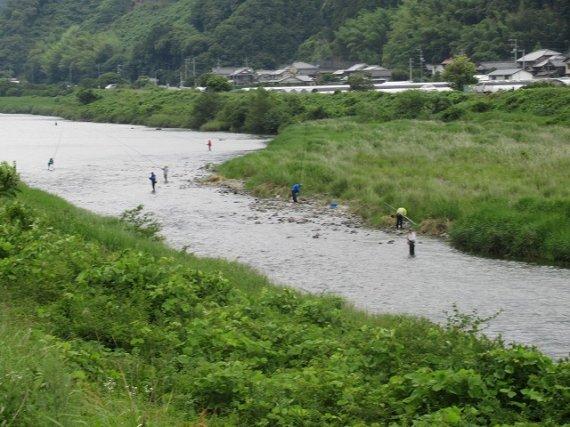 鮎漁解禁日